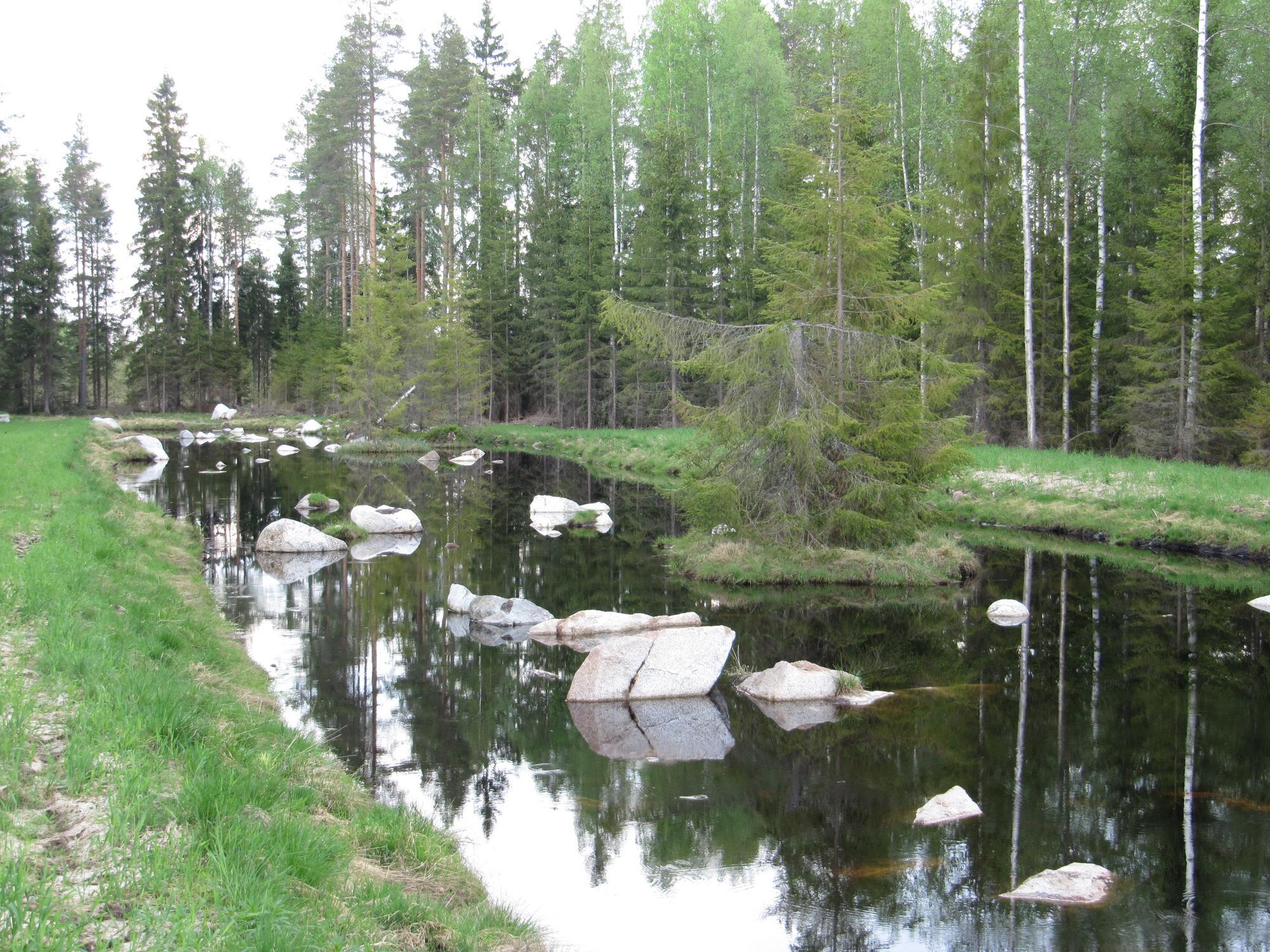 Valokuva kosteikon avovesialueesta, jossa virtaamaa hidastavia kiviä ja saarekkeita.